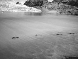 Sands of time by RatitaDeCampo