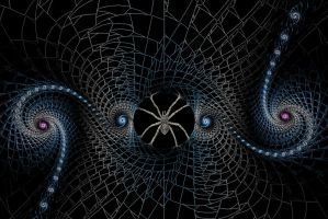 SPIDER WEB by MindStep