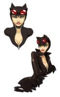 Catwoman doodles by v-vn