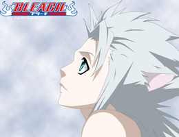 Bleach 304: Toshiro by aagito