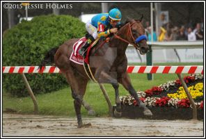 American Pharoah Wins the Preakness by Jessie-kad
