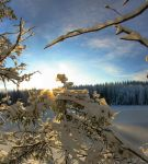 sun and snow by KariLiimatainen
