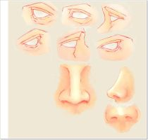 Eyes and Nose Practice 2A by fly7angel