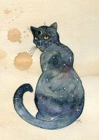 Cosmic Cat by Kitty-Grimm