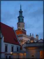 Poznan Town Hall by WormWoodTheStar