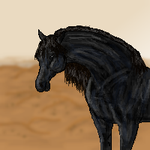 The Black Stallion by jackiehorse