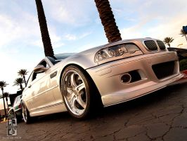 Sleek Silver Bimmer by Swanee3