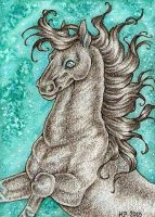 ACEO Trade: Midnight by Agaave