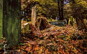 Sweet Dreams by PartTimeCowboy