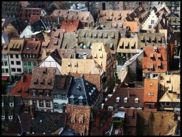 French Rooftops by panthera-lee