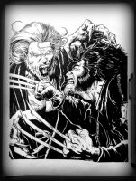 Wolverine vs Sabretooth by FatehBlack