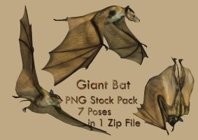 Giant Bat Stock Pack by Roys-Art