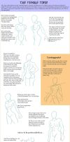 Drawing the Female Torso by Nycteridae