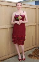 Red Dress Stock 16 by chamberstock