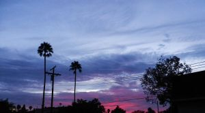 Violet And Magenta Skies by ShipperTrish