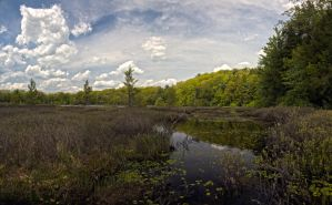 A look at Moss Lake I by xDx