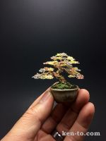 3-color mame wire bonsai tree by Ken To by KenToArt