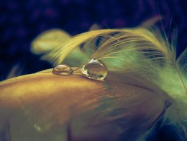 Last droplets. by Pamba