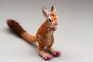 Needle felted springhare 2 by creturfetur