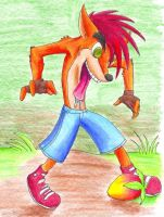 Crash Bandicoot by Kali-Dingocoot