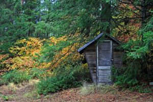outhouse in the Wilds by rockmashane