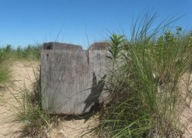 Plank at the dunes 1 by Salgor