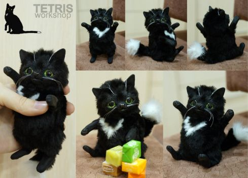 Ravenpaw cat mini toy from Warriors Cats by KrafiCat