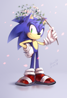 Sonic by BloomTH