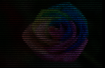 Digital Rainbow Rose [HTML] by Cx3Death