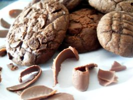 chocolate cookies by VanessaKin