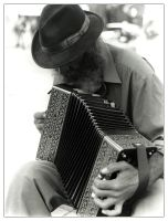 The Accordian Man by alkaline