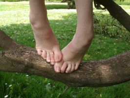 Barefoot Tree Climbing by Foxy-Feet