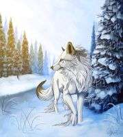 .:Winter:. by Aviaku