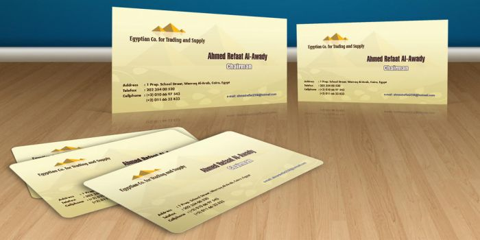 Ahmed Refaat Business Card by Visionadv