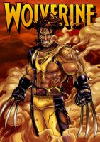 The Unbeatable Wolverine by BenjaminAng