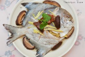 Pomfret by patchow
