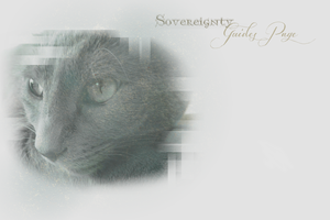 Sovereignty Guides Page Layout -- Winter 2013 by leafeh22