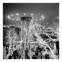 2015-003 Lights of Penn Station - Frosty by pearwood
