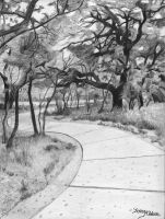 Hardberger Park by DrawingsByTony