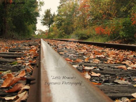 fall tracks by Littlemoments86
