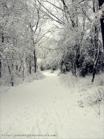 The White Path by Janinedingx3