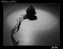 Shadow Of Love by -spacey-