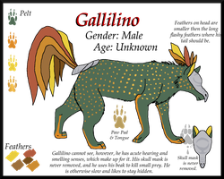 Ref: Gallilino by The--Working-Wulf