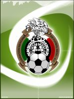 Mexican Federation of Football by Anexos