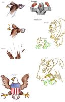 Eagles by DailyBird