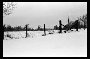 snow and fence by twinkleaira