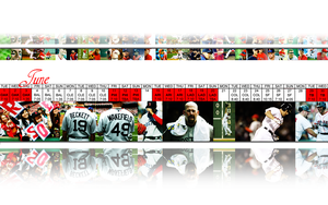 2010 Red Sox:  June by wrennette