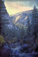 Yosemite Stream by PaulWeber