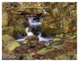 padley gorge 9 by mzkate