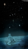 Under The Stars by Snowfall-The-Cat